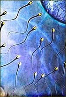 kualitas sperma penyebab kemandulan