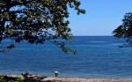 Pantai Ambalawi Wera_keaslian alam yang masih terjaga