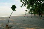 Pantai Kuta_Pagi (291112)