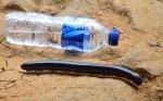 di baduy_Kaki 1 vs botol minumal