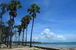 Pantai Lasiana Kupang